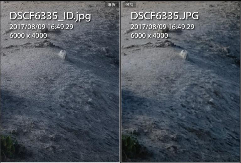 ID&JPEG_2